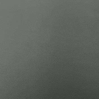 Аризона - тъмно сива